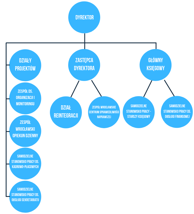 Grafika przestawiająca schemat organizacyjny Wrocławskiego Centrum Integracji.